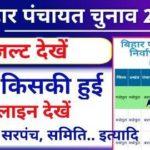 Bihar Panchayat Chunaav Result